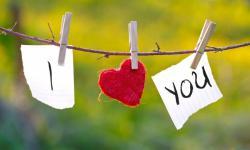 Curiosidades da Bíblia (CdB) - É o amor
