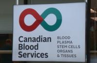 Regra pouco conhecida dos serviços de sangue canadenses exige que as pessoas sejam capazes de ler e falar inglês para doar