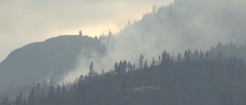 A contagem de incêndios florestais em B.C. se aproxima de 250, mas temperaturas mais baixas e chuva leve trazem algum alívio