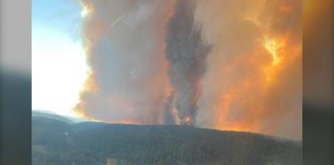 'Ventos imprevisíveis' forçam quase 1.000 evacuações de propriedades em B.C. à medida que o incêndio florestal do Lago White Rock aumenta