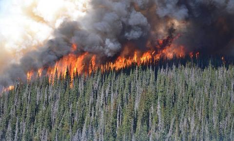 Incêndios florestais desafiam equipes de bombeiros em toda a British Columbia
