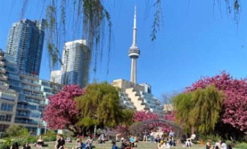 Confira o que abre e fecha durante o feriado cívico em Toronto