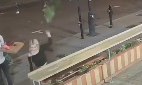 Uma mulher de Montreal arranca as plantas da fachada de um café local e vai embora