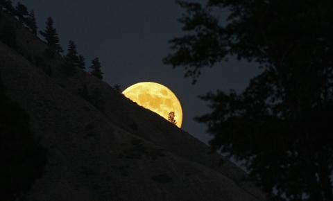 Wolf Moon será a primeira lua cheia do ano nesta quinta-feira