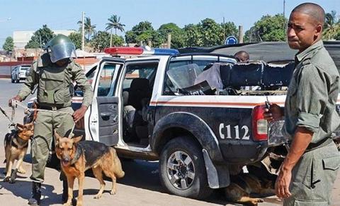 Combate ao tráfico de droga tem cooperação internacional
