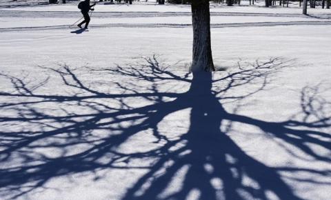 Canadá pode ter primavera com 'flashback do inverno', prevê meteorologista